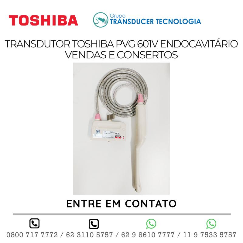 TRANSDUTOR TOSHIBA PVG 601V ENDOCAVITÁRIO VENDAS E CONSERTOS